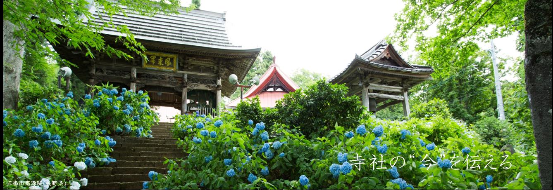"""お寺・神社の""""いま""""を伝える情報メディア 寺社Now"""