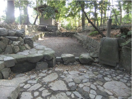 s_3・木嶋神社の元糺の池を上から下の水溜りを見る
