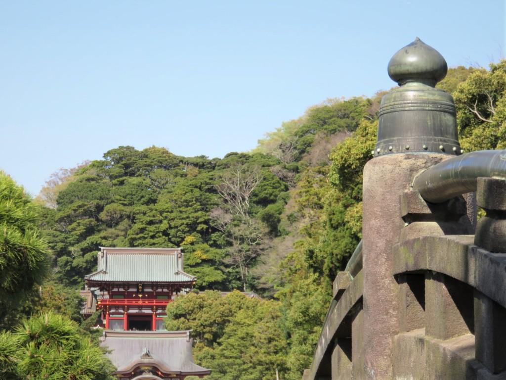 5・鶴岡八幡宮